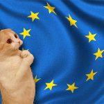 Unión Europea pide a colombianos dejar de pedir que les regalen cosas