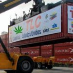 Industria de la marihuana, próxima víctima del TLC