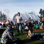 Alarma por presencia de ladrón de capules en Estéreo Picnic 2014