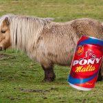 Bavaria desmiente que la Pony Malta esté hecha con carne de caballo