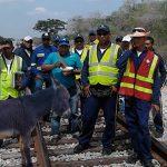 Bloquean tren de El Cerrejón por caso de zoofilia