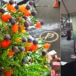 Germina milagroso árbol de tutti frutti en lugar de reguero de jugos