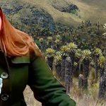 Paloma Valencia pide que frailejones paguen por agua que guardan o sino que los corten